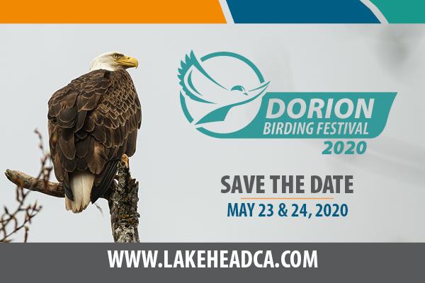 2020 Dorion Birding Festival