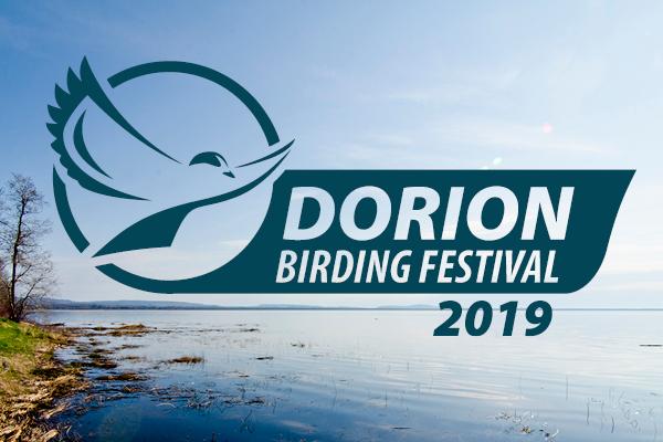 2019 Birding Festival Recap