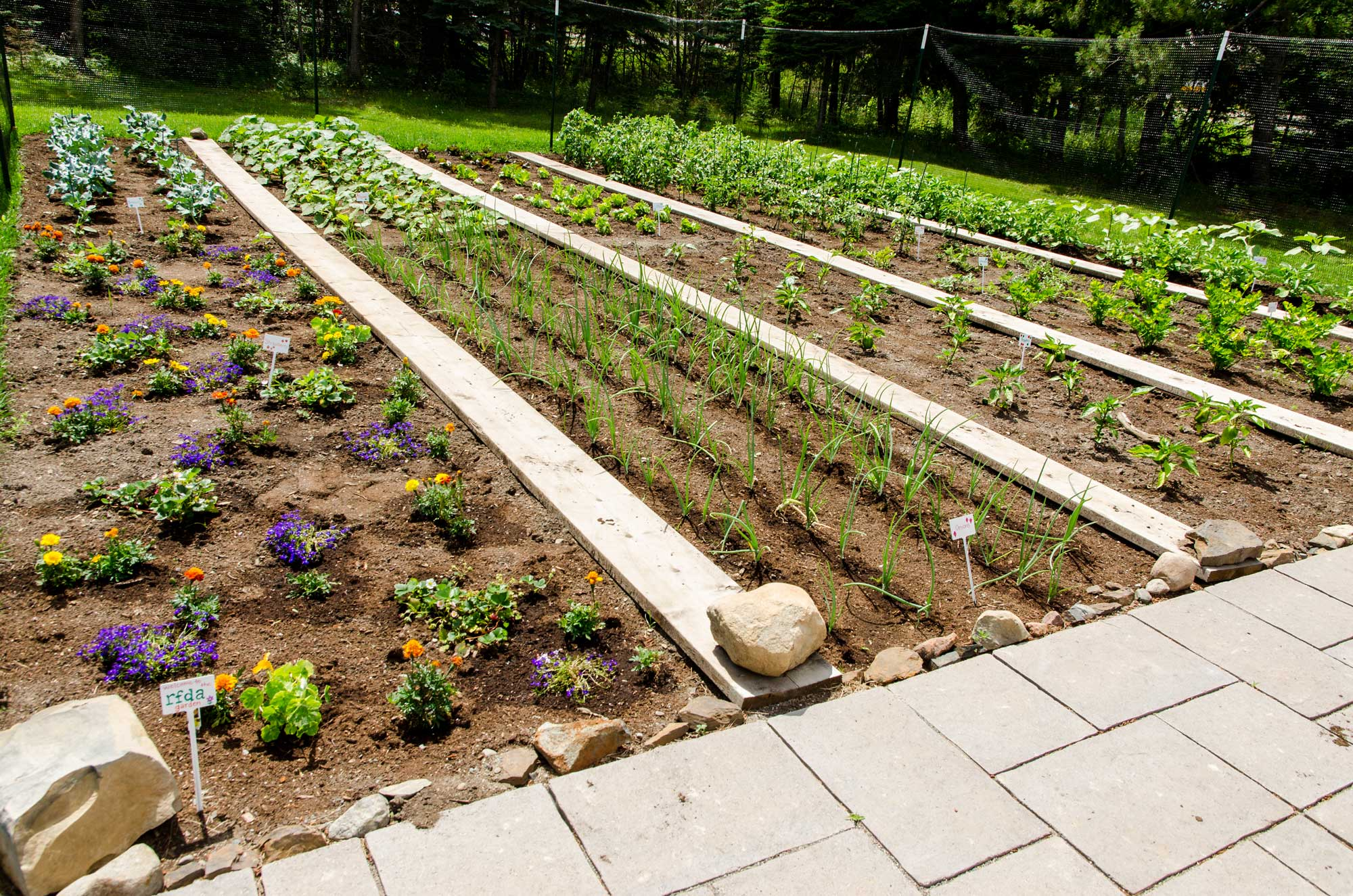 Community Garden :: Lakehead Region Conservation Authority