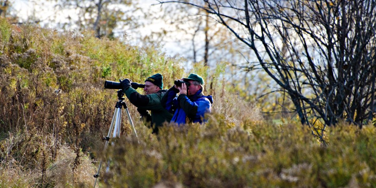 LIVING CLASSROOM- Birding at Mission