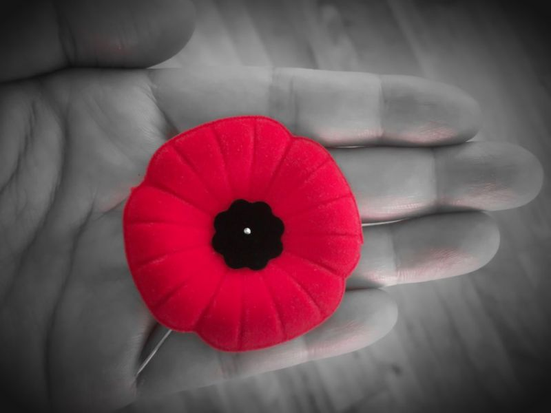 Office Closed for Remembrance Day